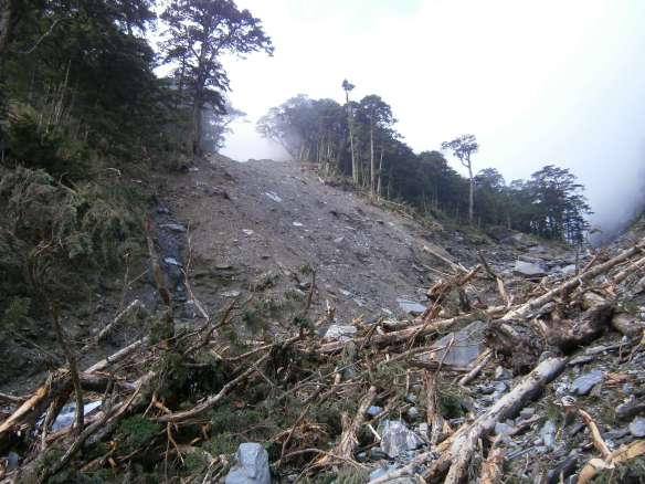 A closer look at one of the landslides near the base of the mountain.