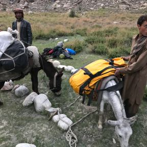 Our porters managing the donkeys, which carried our gear.